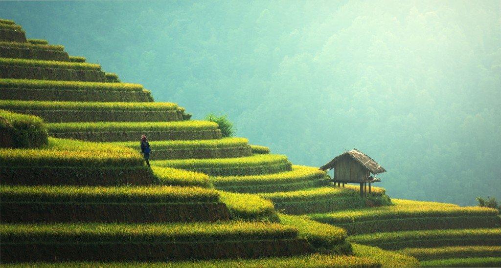 Wyjeżdżamy do Azji. Zabierz ubezpieczenie turystyczne do Chin