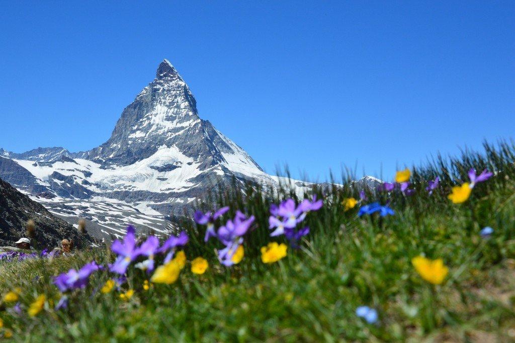 Najtańsze ubezpieczenie turystyczne do Szwajcarii od 2,52 zł dziennie!