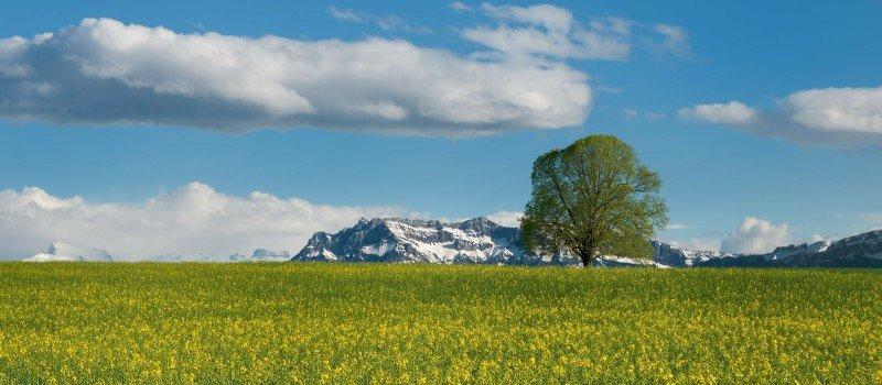 Jak wybrać ubezpieczenie turystyczne do Szwajcarii?