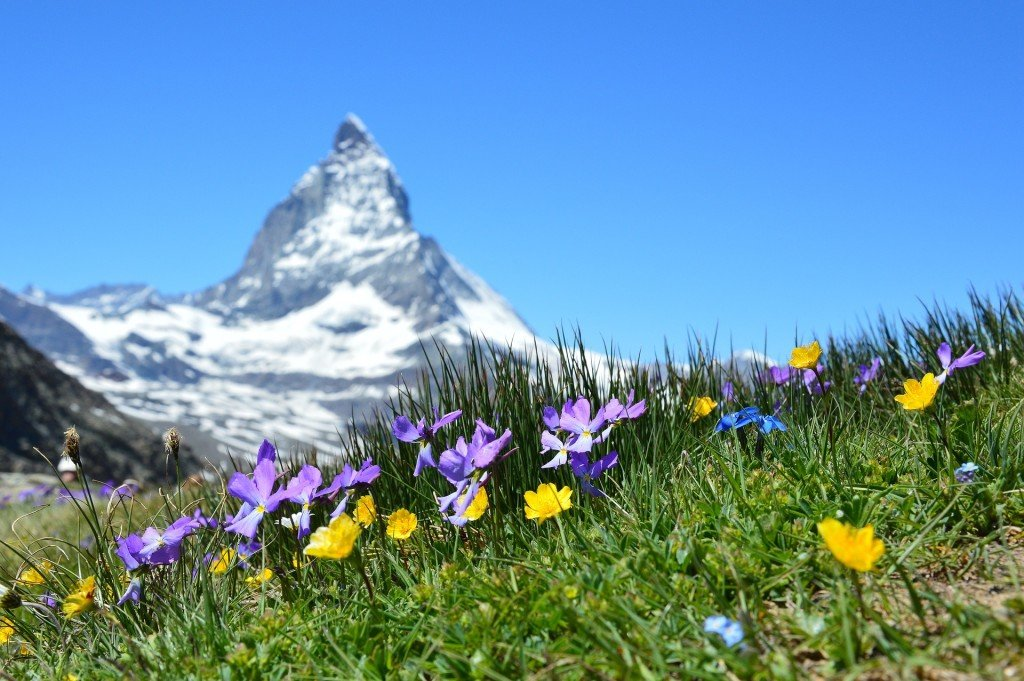 Gdzie znaleźć ubezpieczenie w góry? Szukamy podpowiedzi