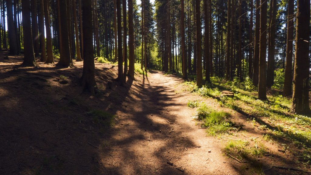 poznaj najlepsze ubezpieczenie turystyczne do Czech