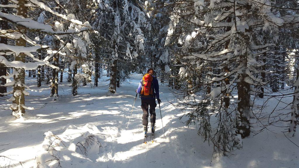 Najlepsze jednodniowe wycieczki na narty