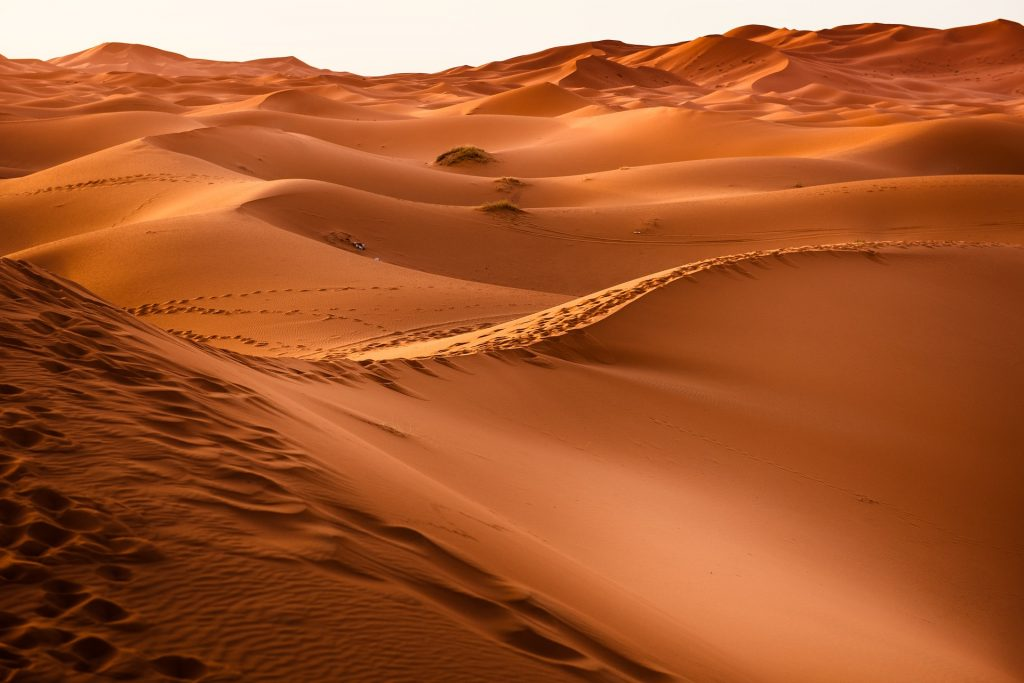 Turcja, Egipt, Maroko i Tunezja - jechać czy nie jechać na wakacje w zagrożone rejony?
